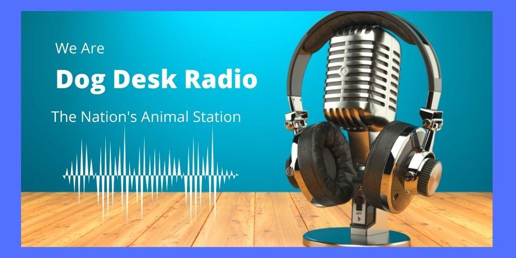 DOG DESK RADIO - LOGO